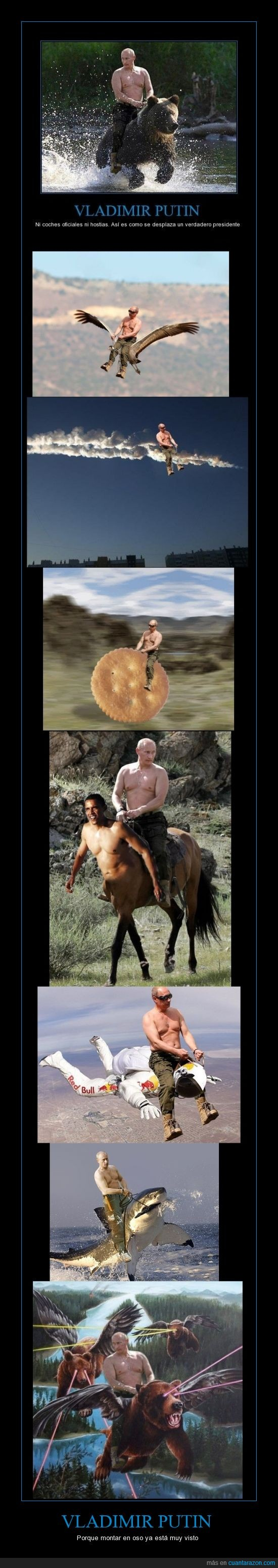 ; Presidentes,Centauros,chops,montajes,Osos,Putin,Rusos,Transporte,Vladimir Putin