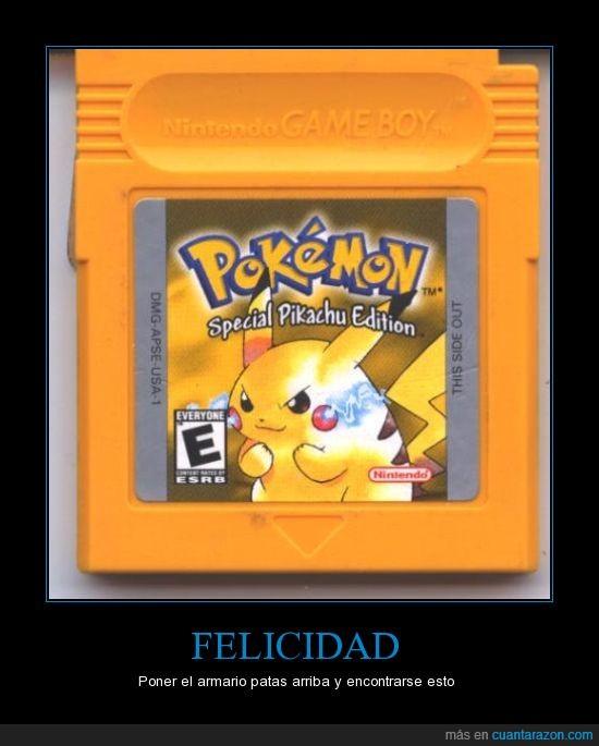 armario,pikachu,pokemon,remover