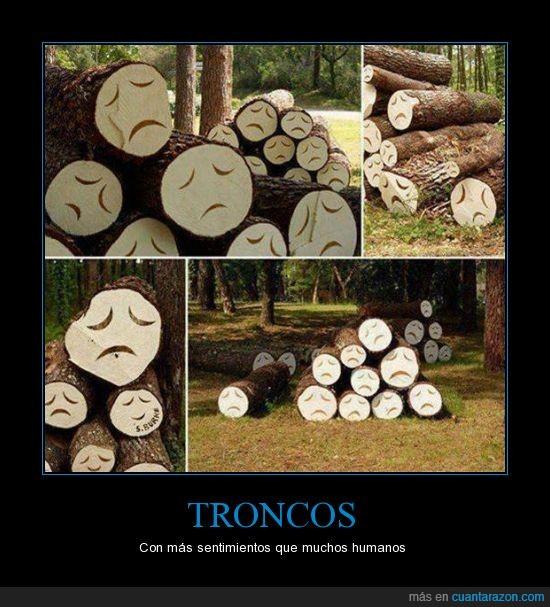 cara,humanos,madera,sentir,triste pero cierto,tristes,troncos