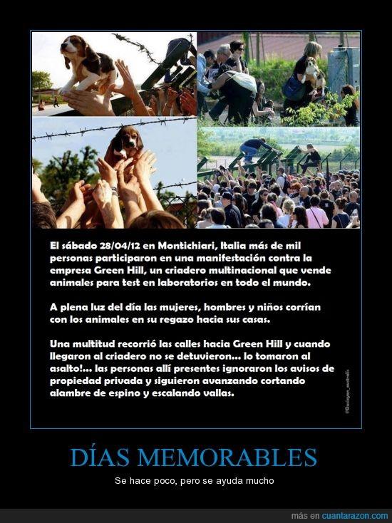 2012,ayudar,días,hacer,Italia,memorables