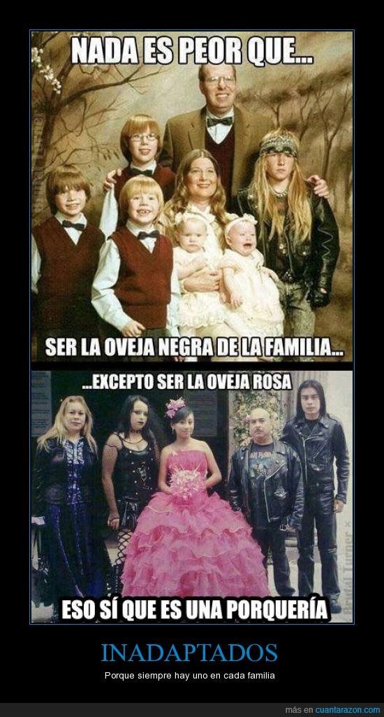 familia,foto familiar,goth,negro,oveja,rosa,xv años