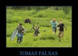 Enlace a TOMAS FALSAS