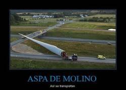 Enlace a ASPA DE MOLINO