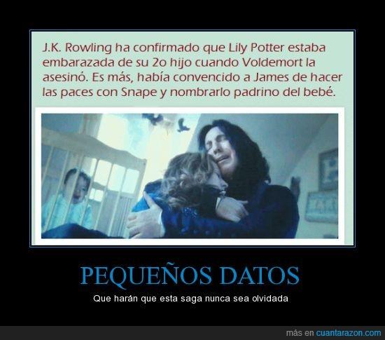 bebé,embarazada,Harry Potter,James Potter,Lily Potter,Severus Snape,¿POR QUEEEEEEEEEEEEÉ?