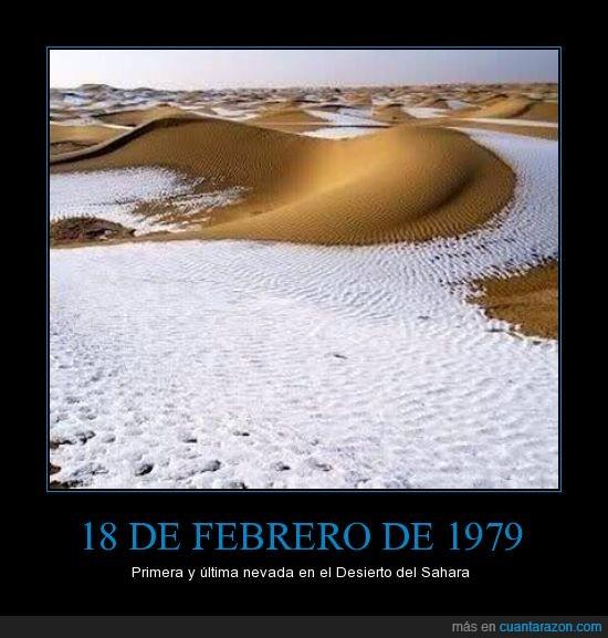 Desierto,extraño,extraudinario,fenomeno natural,nieve,sahara