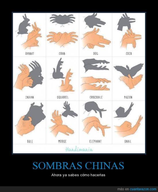 animal,animales,dedo,manos,silueta,sombras