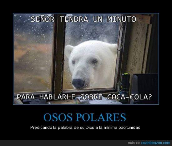 asomar,cocacola,oso,polar,testigo de jehova,ventana