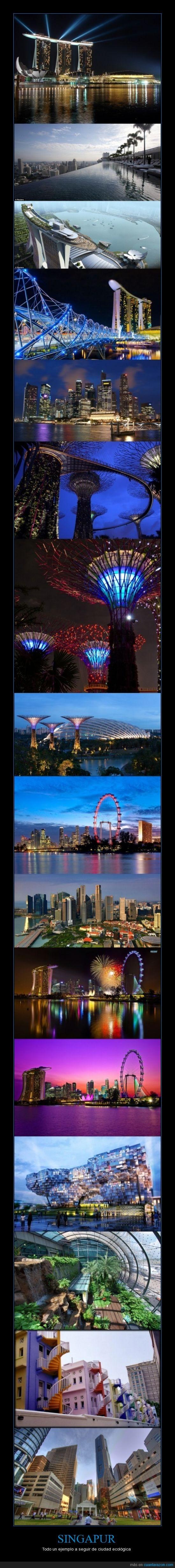 arquitectura,ciudad,ecologica,edificio,singapur