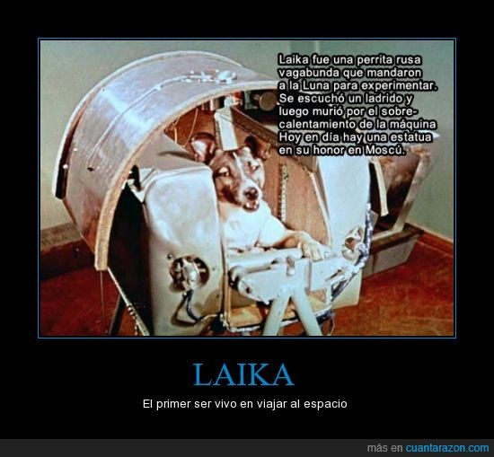 espacio,Laika,mecano,perrita rusa