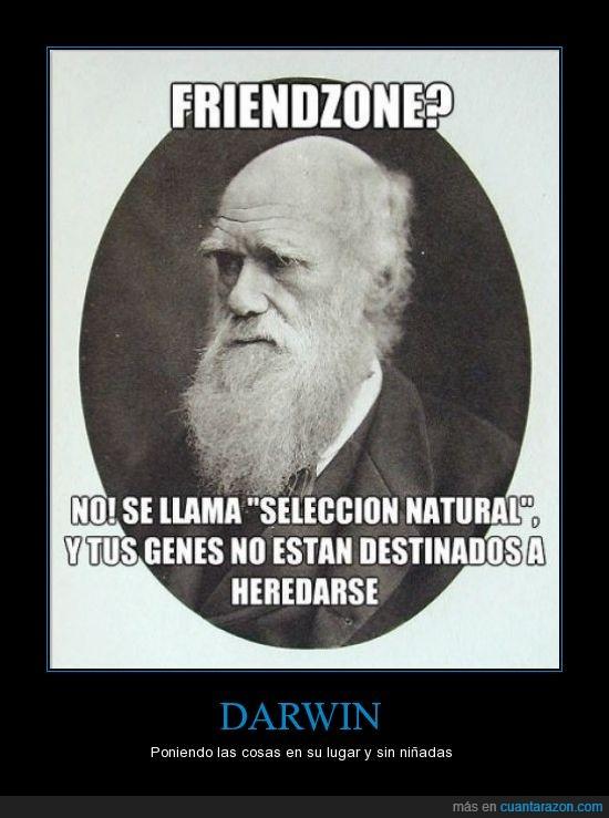 amor,darwin,en realidad no dijo eso no os pongais picajosos,friendzone,genes,heredar,selección natural