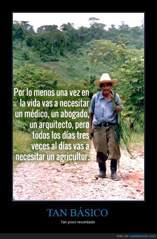 abogado,agricultor,campesino,comer,educacion,medico,sociedad
