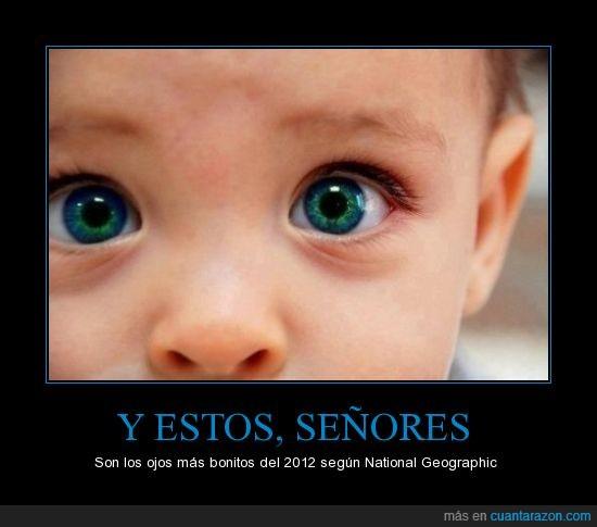 2012,asombroso,color,hermosos,national geographic,ojos