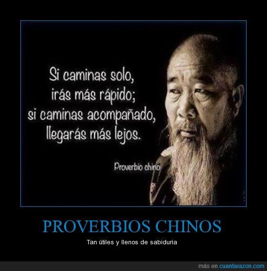 chinos,consejo,inteligencia,proverbio,razón,sabio
