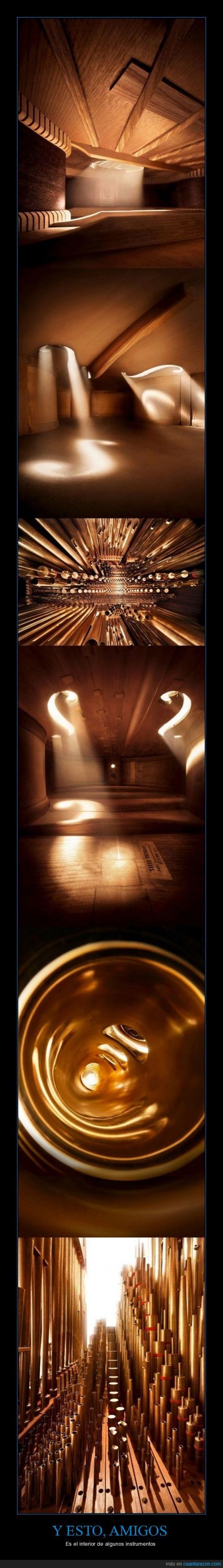 contrabajo,hay más,instrumentos,interior,parecen habitaciones,saxofón,violín