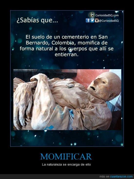 cementerio,colombia,cuerpos,momia,san bernardo