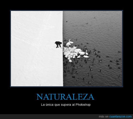 foto,naturaleza,photoshop,real,supera,unica
