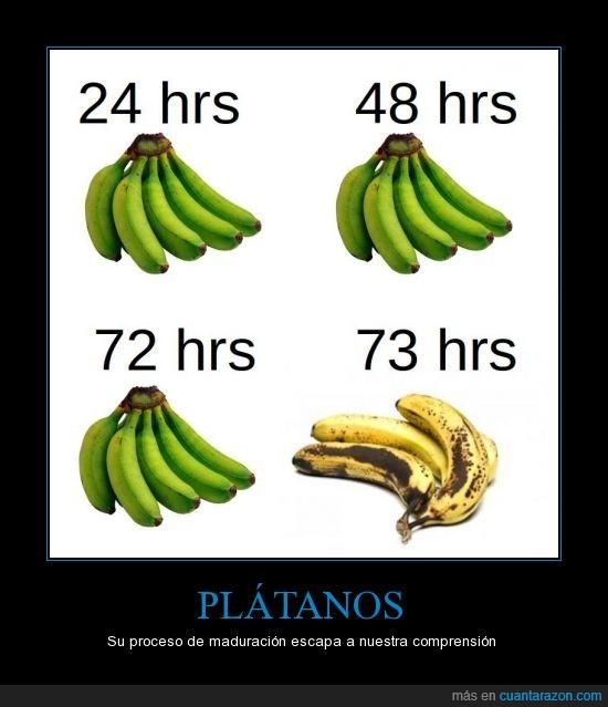 banana,madurar,podrir,tiempo
