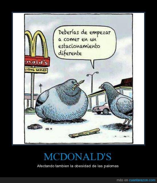 afectar,comer,comida rápida,estacionamiento,hamburguesas,mcdonalds,obesidad,palomas,ronald