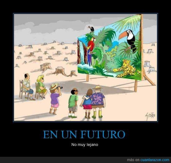 arboles,Futuro,naturaleza,personas,selva,tucan