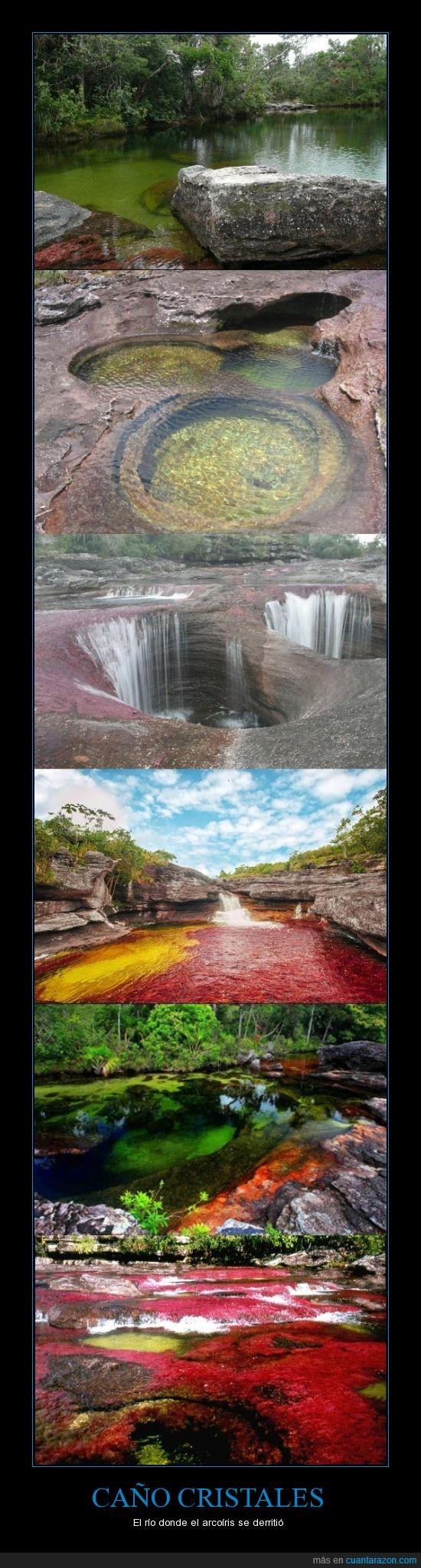 arco iris,caño cristales,cinco colores,colombia,derretir,macarena,rio
