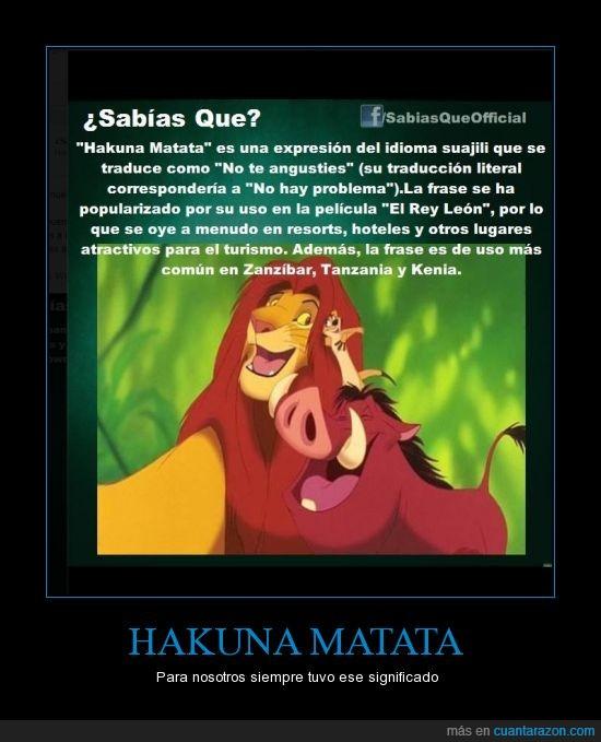 el rey leon,hakuna,matata,sin preocuparse,suajili