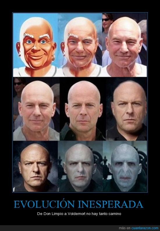bruce willis,don limpio,hank breaking bad,patrick stewart,voldemort