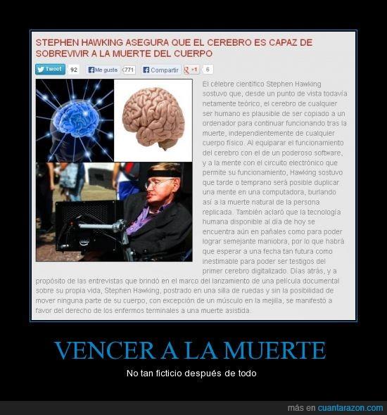 cerebro,http://noticias.tuhistory.com/stephen-hawking-asegura-que-el-cerebro-es-capaz-de-sobrevivir-la-muert,Stephen Hawking