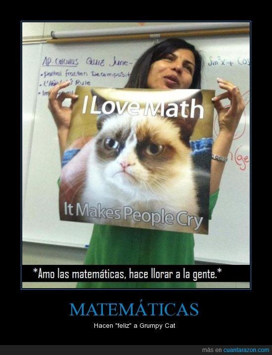 gato,grumpy cat,llorar,matematicas,profesora