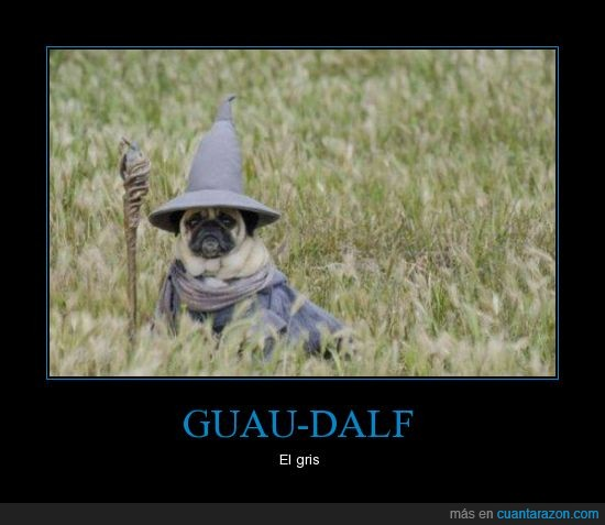 gandalf,gris,guau,mago,perro