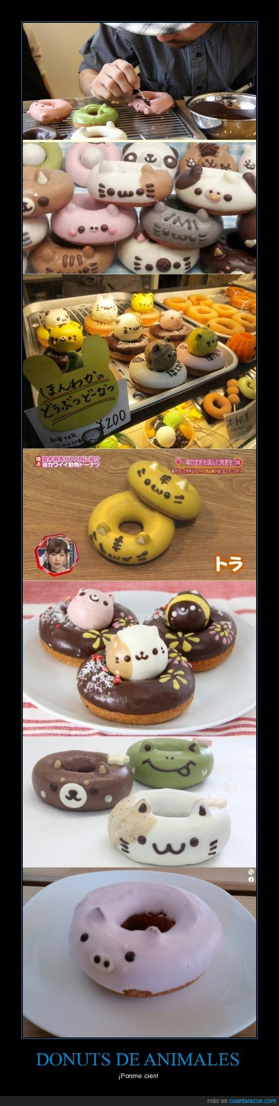 animales,donuts,frost,gato,japon,kawaii
