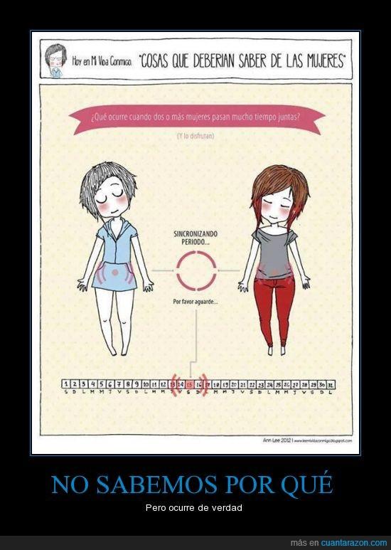 juntas,menstruación,mujeres,no,ocurre,pasar,periodo,por qué,regla,sabemos,saber,sincronizar,tiempo