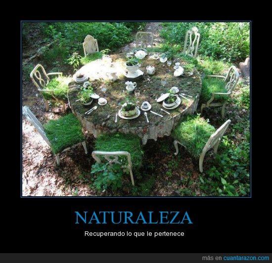 hermoso,hierba,jardin,mesa,naturaleza,pasto,recuperar,sillas,verde