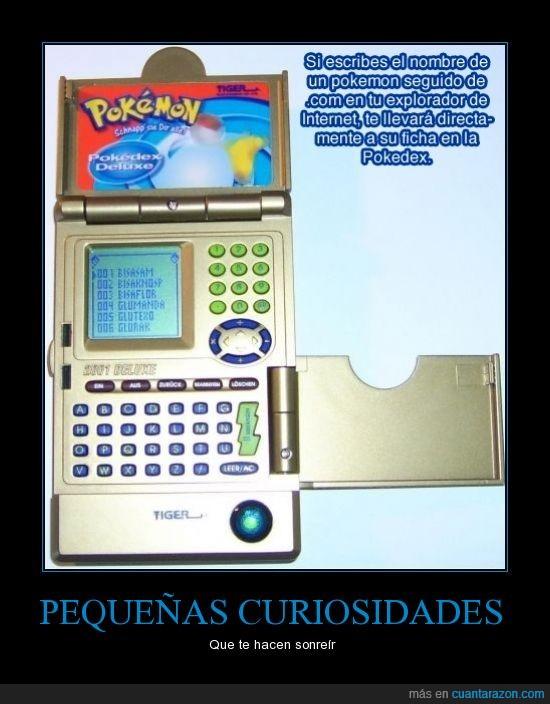.com,curiosidades,ficha,nombre,pokedex,pokemon,web