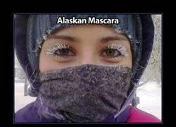 Enlace a ALASKA
