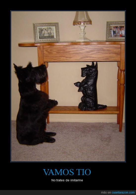 ceramica,figura,imitar,negro,perro