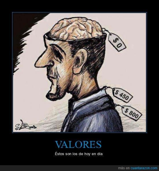 cerebro,dinero,dolares,etiqueta,precio,ropa,valor