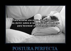 Enlace a POSTURA PERFECTA