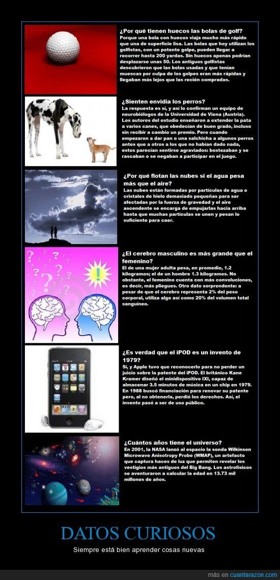 aprender,cerebro,curiosos,datos,golf,instituto,ipod,nube,perro,universo