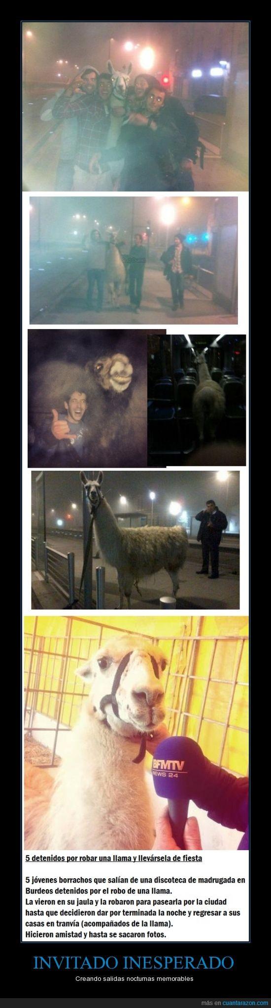 amigo,amigos,Bourdeaux,Burdeos,detenidos,fiesta,invitado,Llama,se ve a la llama feliz xD