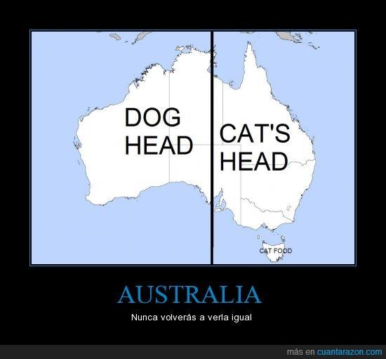 Australia,comida para gatos,gato,perro,rompe los esquemas