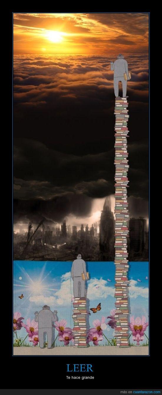 cielo,conocimiento,ignorancia,leer,libros,luz,realidad,sol,ver