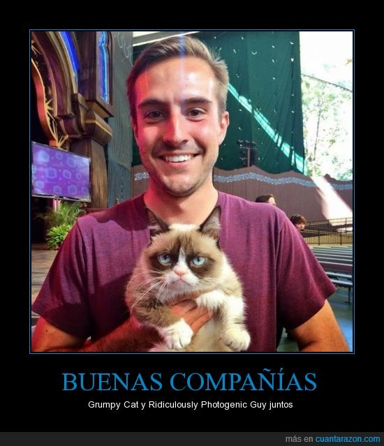 Disneyland,gato,Grumpy Cat,memes,ridiculously Photogenic Guy,together