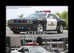 Enlace a COCHES DE POLICÍA