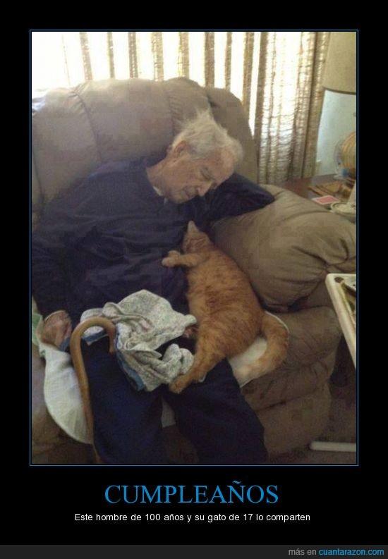amigos,amistad,cien años,compatir,cumpleaños,diecisiete,gato,siempre amigos,tierno