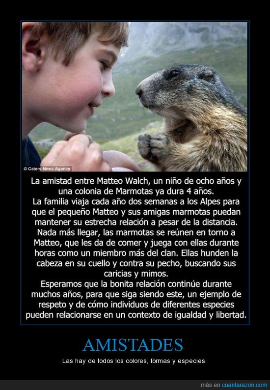 amigos,amistad,amor,animales,llevar,marmota,montaña,niño,padre