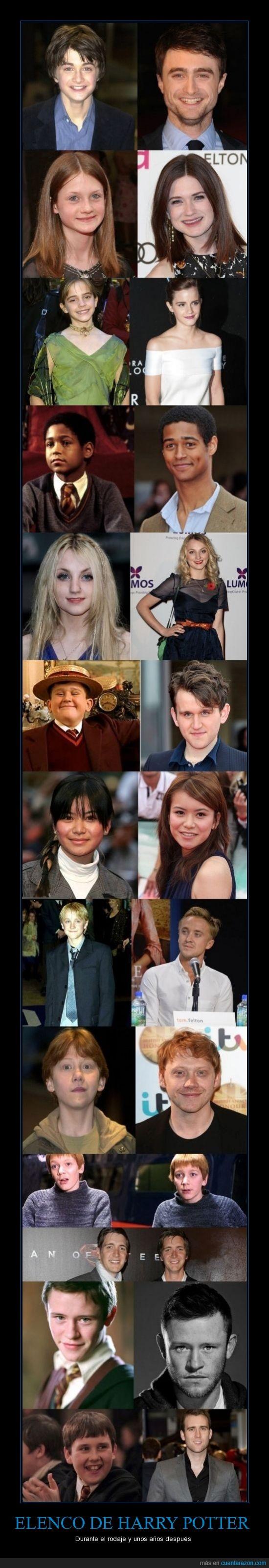 actores,adolescencia,crecer,después,durante,Harry Potter,pelicula