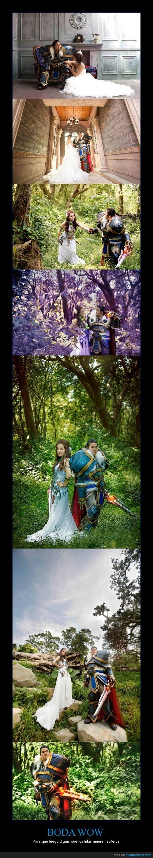 armadura,cosplay,disfraz,friki,novia,taiwan,traje,world of warcraft,wow