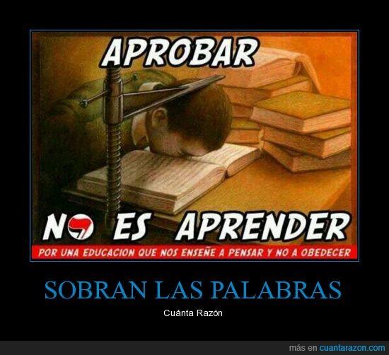 aprende,aprobar,conocimiento,obedecer,palabraslibro,pensar,protesta