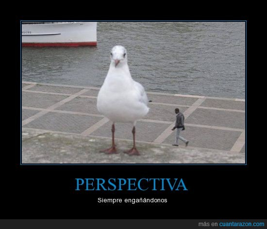 ave,cerca,gigante,hombre,lejos,mar,negro,perspectiva,shingeki no gaviota