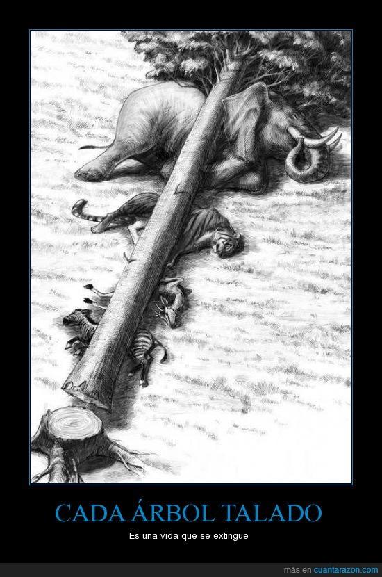 Resultado de imagen de si cortamos los arboles matamos los animales